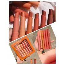Set of 6 Heng feng Nude Twist Lipsticks Box